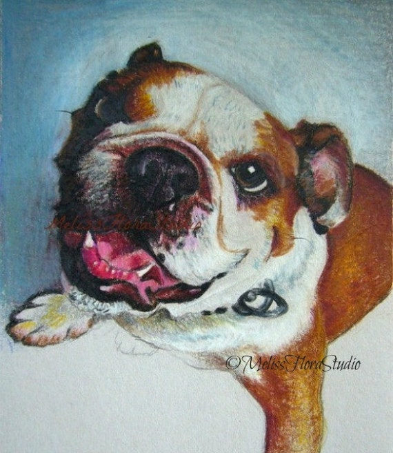 """Custom Pet Portraits - Original Miniatures  in Color Pencil -  4"""" x 6"""" or 5""""x 5"""" - Personal Gift for Pet Lovers"""