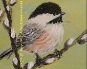 Chickadee on Pussy Willow 5 X 7 Inch PRINT - Bird 1 - Brushstroke Enhanced