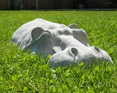 "Hippopotamus Garden Sculpture, Hippo Ornament 27"" Long, Concrete Cast"