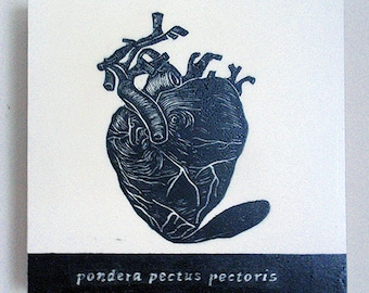 The Well Balanced Heart, Relief Print on Wood Panel, encaustic, anatomical heart, latin text, hand pulled print, original art