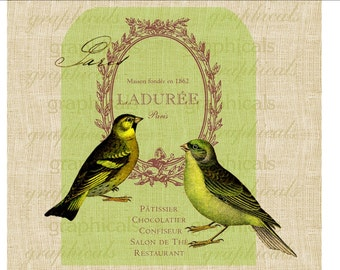 French decor Birds Instant clip art Lime green Digital download image for iron on fabric transfer burlap decoupage pillow Crafts No. 1843