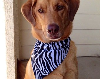 Zebra Styled Over-The-Collar Bandana
