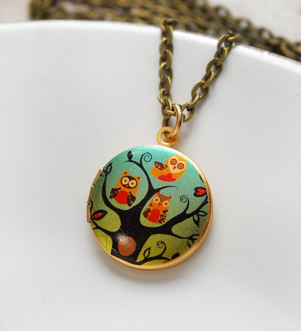 owl necklace jewelry baby owl locket jewelry photo pendant. Black Bedroom Furniture Sets. Home Design Ideas