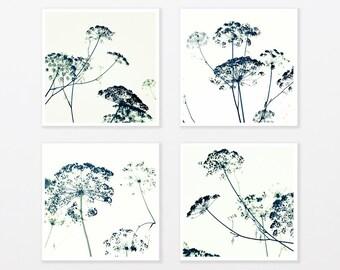 "Black and White Photography Set 8x8"" to 40x40"" Zen Grass Botanical Minimal, bathroom decor, loft Wall Decor gift for him for trendy man"