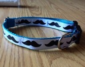 LAST ONE 3/4 inch wide adjustable side release pet collar - mustaches - turquoise webbing - medium