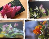 Recycled Blank Blossom Photo Cards of Vancouver Island: Support Lyme Disease Foundation