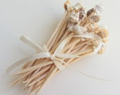 Shell Cocktail Toothpicks - 50 pcs.