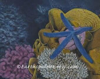 Ocean sea life painting 8x10 print from original oil paintings starfish sea creatures summer home decor earthspalette