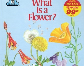 What Is a Flower Vintage Merrigold Press Book Illustrated by Dorothea Barlowe 1990