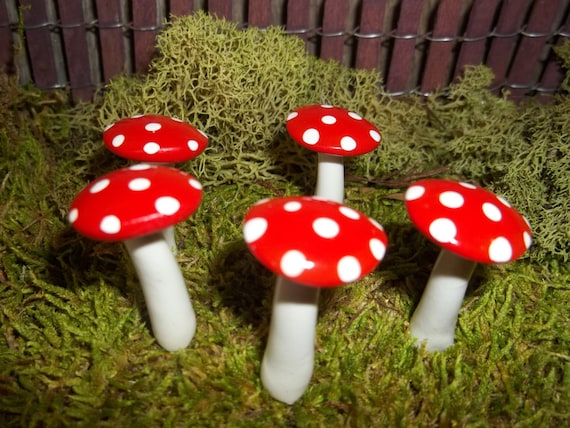 FREE Shipping 5 miniature fairy garden mushrooms terrarium toadstool woodland red container garden decor