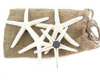 Starfish Magnets WHITE (set of 6)
