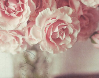pink, roses, still life, fine art photography
