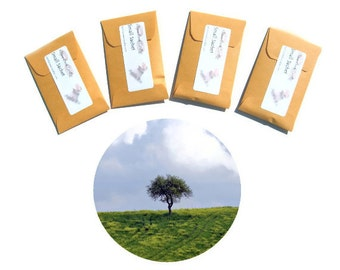 Scented Sachets Tuscan Cypress Lgbt Gay Couple Gift Unique Wedding Favors Choice of Colors Personalization Seed Packets Envelopes