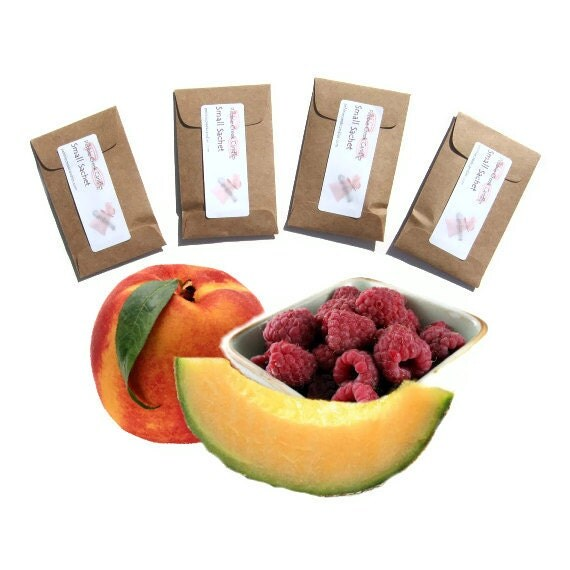 Unique Thank You Gifts Summer Salsa Scented Oil Sachets Home Fragrance Shop USA Drawer Sachet Fruit Party Favors Fiesta Decoration