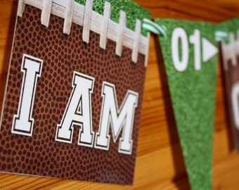 Football High Chair Banner - First 1st Birthday - Laminated - Custom Requests Welcome - Fast Shipping - Football Party Decoration