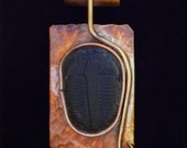 Trilobite Fossil mounted on copper