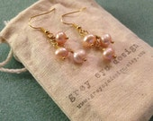 Blush Pink Fresh Water Pearl Dangle Earring on Gold Plated Wire