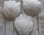 White Nagorie Feather Pads Set of 3