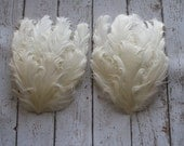 Nagorie Feather Pads Ivory Set of 2