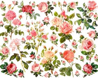 Pink Roses Collage Sheet - Digital Flowers - Scrapbooking - Printables Images - Scrapbook - Download - 1610
