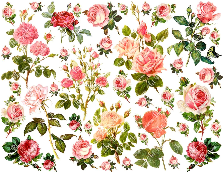 Scrapbook paper collage - Pink Roses Collage Sheet Digital Flowers Scrapbooking Printables Images Scrapbook Download 1610