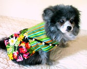 Small Dog's Dress Chihuahua - Cotton Pink, Green, Black & Turquoise Desert Blossoms