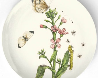 1600's botanical I melamine plate