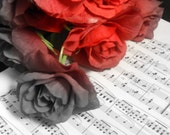 Roses and Melodies