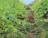 "Original Wildlife painting ""The Visitor"""