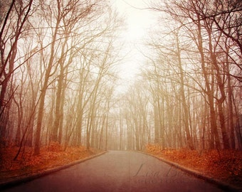 Forest Photograph, Enchanted Forest - Nature Photography - Surreal, Dreamy, Trees Mist Fog Photograph