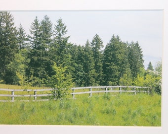 5 x7 matted photo, Pacific Northwest, countryside