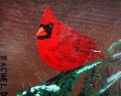 A Crisp Evening with Mr. Jones Northern Cardinal by artist Rachel Dickson original acrylic paintings on wood