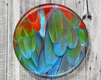 Pocket Mirror - Parrot Feather Compact Mirror - Feather Photo Image - Compact Mirror - Bridesmaid Gift A58