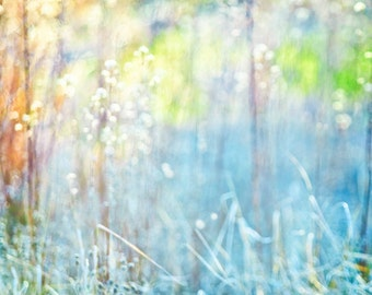 Soft Dreamy Nature Grass -Spring & Summer Botanical Abstract -Blue Green Yellow -Square Composition -Fine Art Photograph - Home Decor