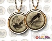 VINTAGE BIRDS - 1 inch & 1.5 inch images for resin pendants bezel settings magnets DIY craft bottle caps Jewelry Making Glass Cabochon Arts