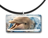Dolphin, Friends, fins, pawprints, glass tile pendant, handmade, pets, photography art, photo print, wild dolphin