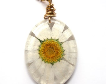 Real Daisy Necklace - Real Pressed Daisy Encased in Resin - Pressed Flower Jewelry - Daisy resin Necklace - Wire Wrapped Pendant
