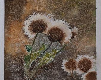 Original signed Irish Watercolour Painting by Artist MARIE LEWIS - Dandelion 3