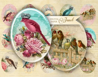 Birds Kingdom - oval image - 30 x 40 or 18 x 25 mm - digital collage sheet  - Printable Download