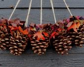Pine Cone Pew Decoration, Pinecone Wedding, Pine Cone Chair Decor, Wedding Chair Decor with Pinecones, Wedding Pew Decoration Set of 5