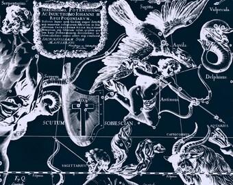 Zodiac map, Constellation, Astrology, 129