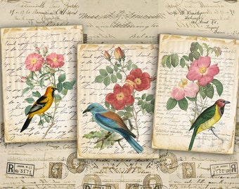 Digital Collage Sheet - Greeting Cards - Digital Backgrounds - Jewelry Holders - Printable Collage - Paper Craft - ANTIQUE LOVELY BIRDS