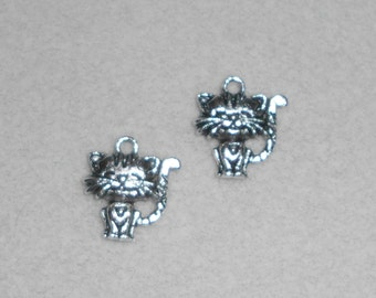 Silver Cat with Heart Charms