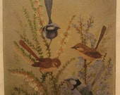 RESERVED Original Naive Bird Painting with 2 Blue Birds and 2 Brown Birds.