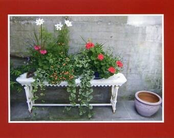 Courtyard bench - Photo card