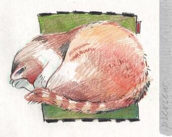 The sleeping Red Mumu, the Muse