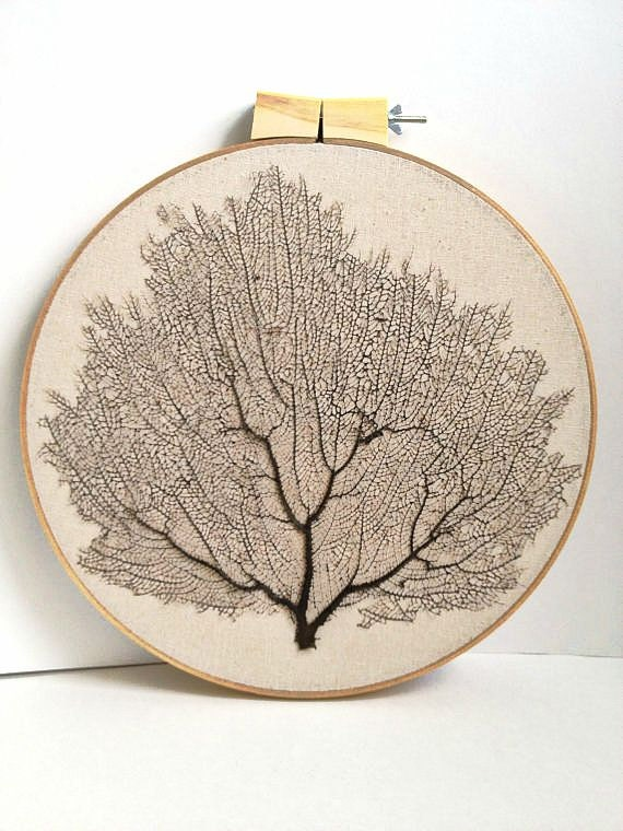 Sale -Framed natural Sea Fan coral hand-stitched stretched on embroidery hoop - beach chic,cottage. Great summer gift. Summer decor.