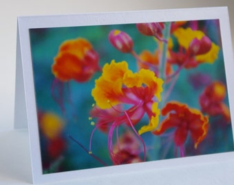 Orange flower card, greeting card, stocking stuffer, photo card, orange, yellow, green, thank you, thinking of you, hand made, fine art
