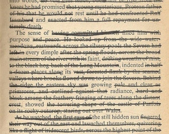 Print of found text poem 'like a flight of iridescent birds'