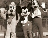 SALE - goofy, mickey and pluto -  Disneyland publicity glossy - frameable print